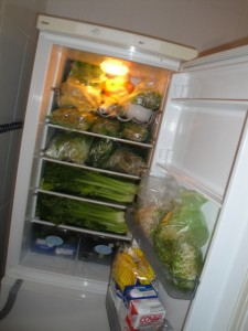 Packed fridge