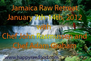 Jamaica Raw Retreat